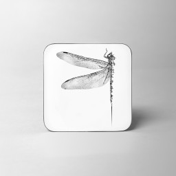 Dragonfly Coaster White Background.jpg