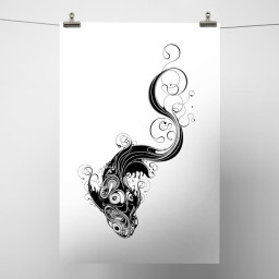 Koi White Background.jpg